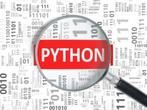 Best Programming Language for Newbie to Learn  in 2021