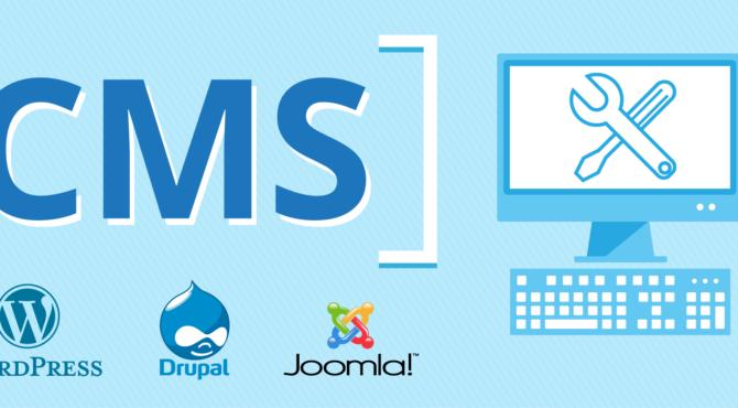 Web Developer of CMS website using WordPress